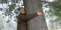 Обнимайте деревья, раз нельзя обнимать людей